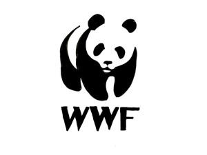 WWF: Akdeniz ülkeleri denizlerini yeterince koruyamıyor
