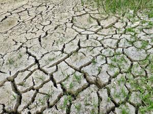"""""""İklim değişikliği 21'inci yüzyılda en büyük sağlık tehdidi olabilir"""""""