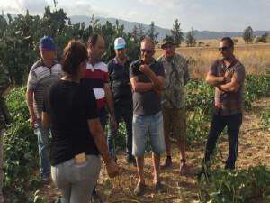 Tarım Dairesi eğitim çalışmalarına bu hafta Serdarlı köyü ile devam etti