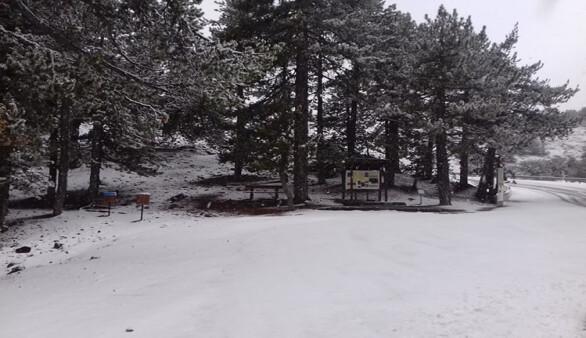 Trodos'a yılın ilk karı düştü