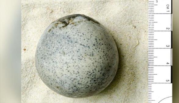 Arkeologlar yanlışlıkla bin 700 yıllık yumurtaları kırdı