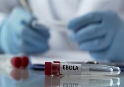 Ebola için bir aşı daha üretildi
