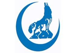 KKTC Ülkü Ocakları Güney Kıbrıs'ta KKTC bayrağına yapılan saldırıyı kınadı