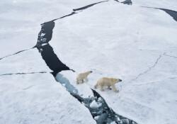 Kuzey Kutbu'nda 'karla karışık plastik' yağıyor