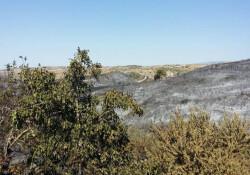 Limasol'daki yangın tamamen kontrol altına alındı