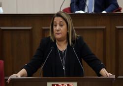 """Manavoğlu: """"KKTC ciddi bir seçim zehirlenmesi yaşıyor"""""""