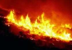 Paşaköy'deki ağılda yangın