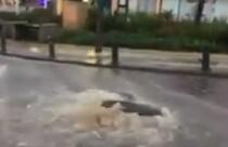 Yağmur Güney Kıbrıs'ı da etkiledi
